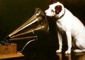 grammofono-voce-del-padrone