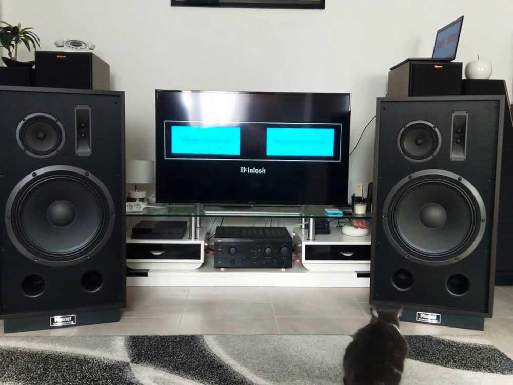 casse-speaker-magnat-transpuls-1500
